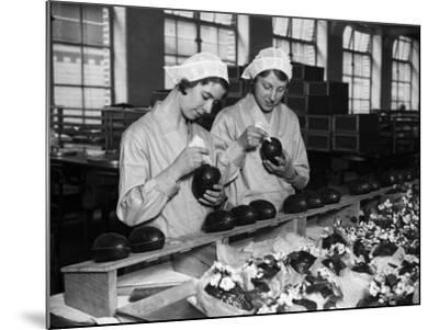 Cadbury Eggs--Mounted Photographic Print
