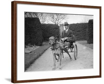 Dog Carriage--Framed Photographic Print
