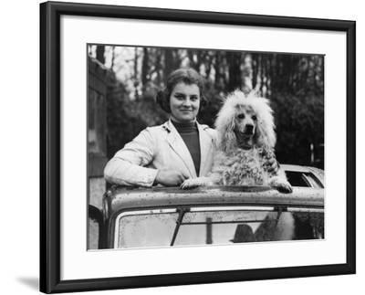 Mobile Poodle--Framed Photographic Print