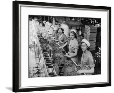 Canning Beans--Framed Photographic Print