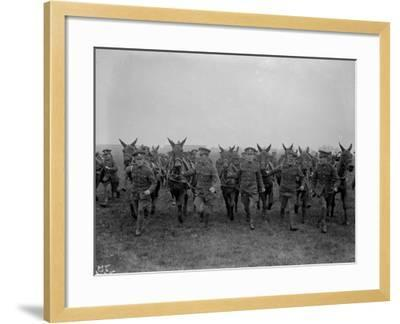 Army Mules--Framed Photographic Print
