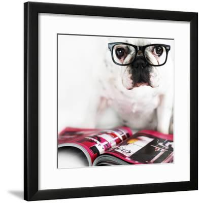 Dog with Glasses-retales botijero-Framed Photographic Print