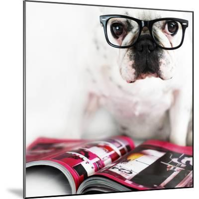Dog with Glasses-retales botijero-Mounted Photographic Print