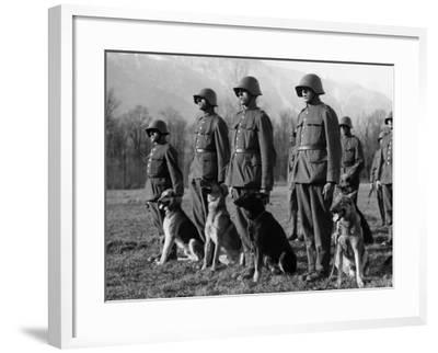 Army Dogs--Framed Photographic Print