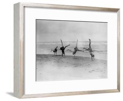 Cartwheels--Framed Photographic Print