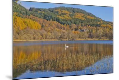 Autumn Colours in the Trossachs, Scotland-Dennis Barnes-Mounted Photographic Print