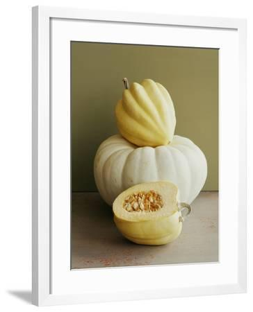 Varieties of Squash.-Victoria Pearson-Framed Photographic Print