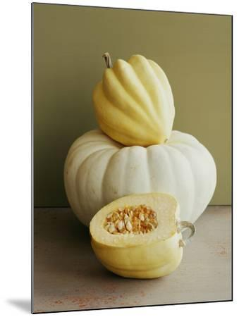 Varieties of Squash.-Victoria Pearson-Mounted Photographic Print