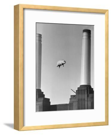 Pink Floyd's Pig Photographic Print by Keystone | Art com