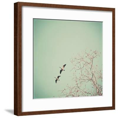 Two Geese Migrating-Laura Ruth-Framed Photographic Print