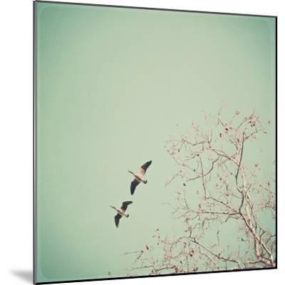 Two Geese Migrating-Laura Ruth-Mounted Photographic Print