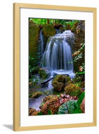 Waterfall-Patti Sullivan Schmidt-Framed Photographic Print