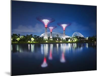 Singapore Garden by Bay Super-Trees-Tomatoskin-Mounted Photographic Print