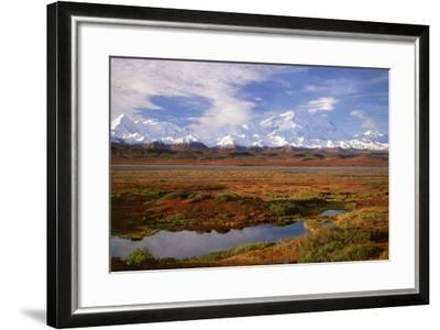 Tundra and Kettle Pond in Denali National Park, Alaska in the Fall. Mount Mckinley in the Backgroun-Mint Images - David Schultz-Framed Photographic Print