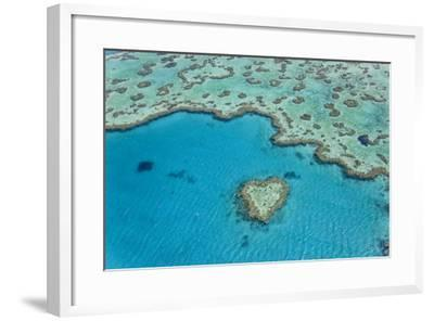 Heart Reef, Part of Great Barrier Reef, Australia-Peter Adams-Framed Photographic Print