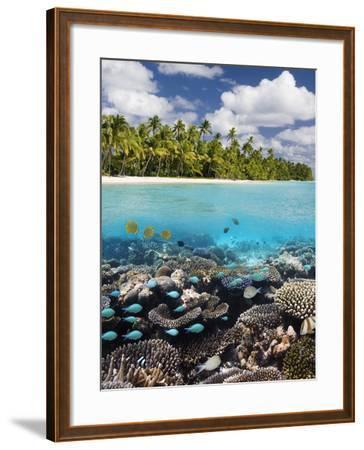 Tropical Paradise - the Maldives-Steve Allen-Framed Photographic Print