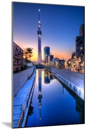 Tokyo Sky Tree Sunset Reflection-Image Provided by Duane Walker-Mounted Photographic Print