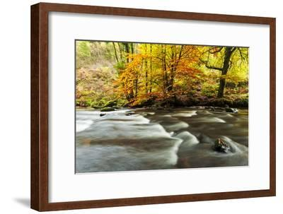 The River Teign and Whiddon Wood in Autumn.-Alex Hare-Framed Photographic Print