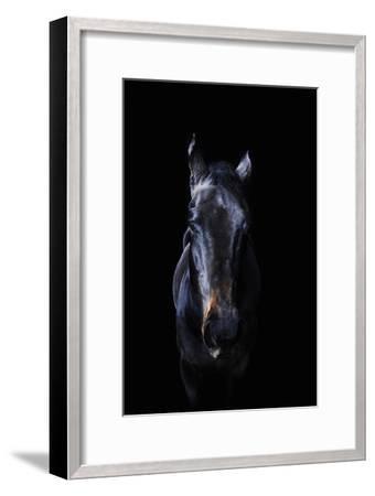 Horse-Yusuke Murata-Framed Photographic Print