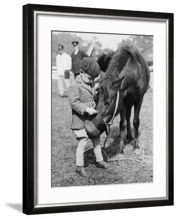 Feeding the Pony-Fox Photos-Framed Photographic Print