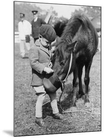 Feeding the Pony-Fox Photos-Mounted Photographic Print