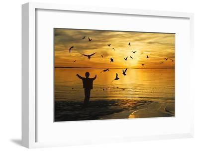 Flying Seagull with Silhouette-KAM-Framed Photographic Print