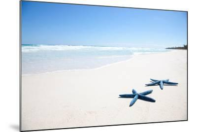 Two Blue Starfish on Tropical Beach-Lulu-Mounted Photographic Print
