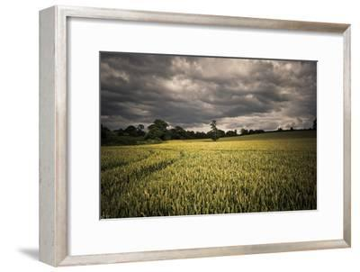 Every Now and Then, the Sun Comes out to Produce D-A photo by Fletche-Framed Photographic Print