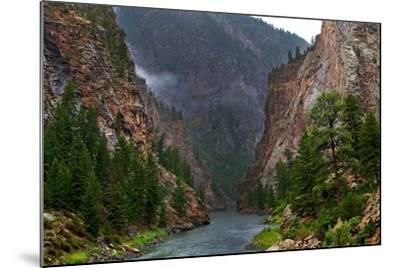 Into the Canyon-Hansrico Photography-Mounted Photographic Print