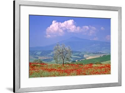Val D'orcia Tuscany Itlay-Kathy Collins-Framed Photographic Print