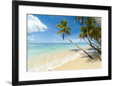 Tropical Beach, Caribbean-John Harper-Framed Photographic Print
