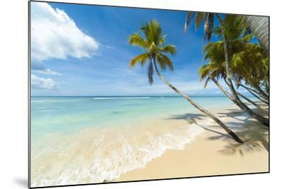 Tropical Beach, Caribbean-John Harper-Mounted Photographic Print