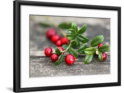 Cranberry-Ana Lukascuk-Framed Photographic Print