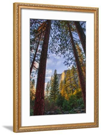 North View Through The Trees, Firefall, Horsetail Falls, Yosemite National Park-Vincent James-Framed Photographic Print