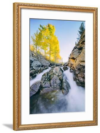 Autumn Flow at Bishop Canyon Creek, Eastern Sierras California-Vincent James-Framed Photographic Print