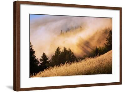 Collision of Light and Fog, Sunset from Mount Tamalpais, San Francisco-Vincent James-Framed Photographic Print