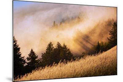 Collision of Light and Fog, Sunset from Mount Tamalpais, San Francisco-Vincent James-Mounted Photographic Print