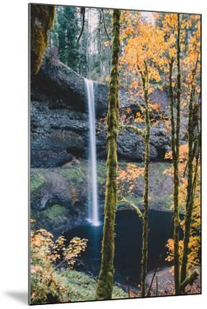 Mystical Autumn Scene at South Falls, Silver Falls State Park, Oregon-Vincent James-Mounted Photographic Print