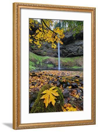 Autumn at South Falls, Silver Falls State Park, Silverton, Oregon-Vincent James-Framed Photographic Print