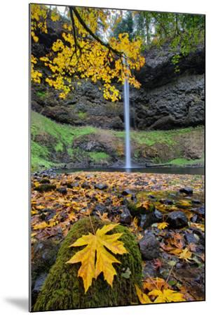 Autumn at South Falls, Silver Falls State Park, Silverton, Oregon-Vincent James-Mounted Photographic Print