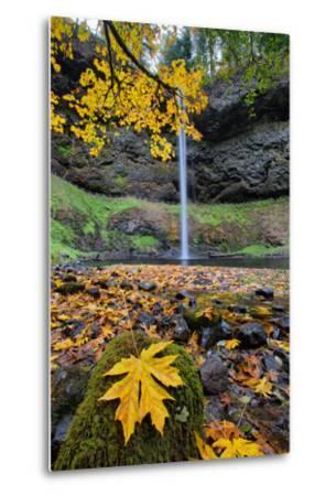 Autumn at South Falls, Silver Falls State Park, Silverton, Oregon-Vincent James-Metal Print