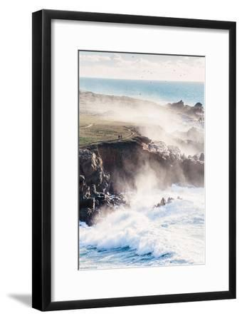 On the Misty Trail, Sonoma Coast, California State Parks-Vincent James-Framed Photographic Print