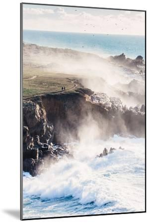 On the Misty Trail, Sonoma Coast, California State Parks-Vincent James-Mounted Photographic Print