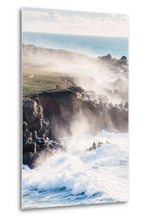 On the Misty Trail, Sonoma Coast, California State Parks-Vincent James-Metal Print