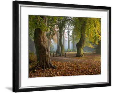 Locke Park-Craig Roberts-Framed Photographic Print