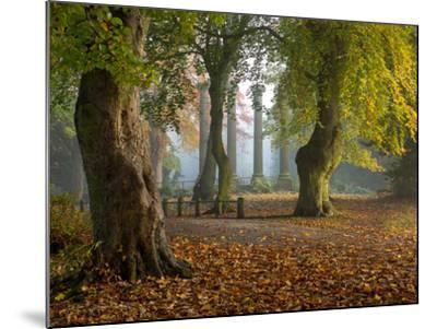 Locke Park-Craig Roberts-Mounted Photographic Print