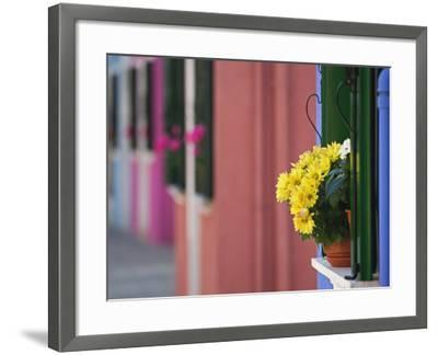 Flowerpot on Window Ledge and Multicolored Buidings, Burano, Italy-Adam Jones-Framed Photographic Print