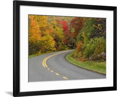 Blue Ridge Parkway Winding Through Autumn Colors, Pisgah National Forest, North Carolina, USA-Adam Jones-Framed Photographic Print
