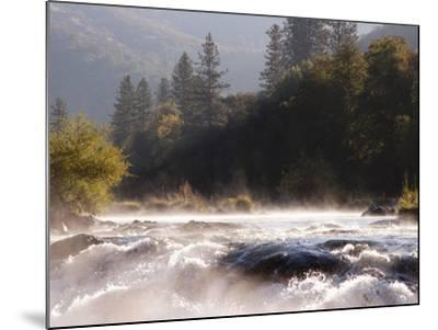 The Rogue River in the Southwestern Part of Oregon Flows About 215 Miles-Sean Bagshaw-Mounted Photographic Print