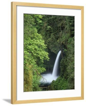 Metlako Falls Cascading into Eagle Creek, Columbia River Gorge National Scenic Area, Oregon, USA-Adam Jones-Framed Photographic Print